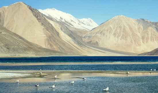 The Enchanting Lakes of Ladakh