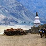 10 Must-Have Experiences for a Heart-warming Trip to Ladakh