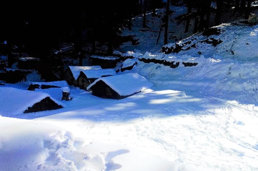 Dalhousie Winter Trek with Camping
