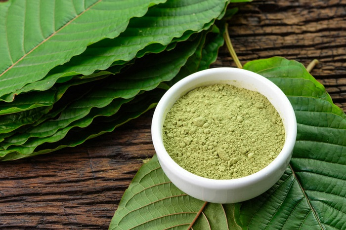 What is Kratom and Why are the Effects of Mitragyna?