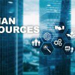 Best HR Management Software